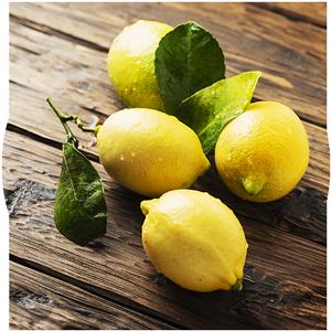 Lemon Tree Shisha